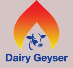 Dairy Geyser logo